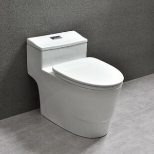 The Ultimate Guide to Buying a Woodbridge Toilet - Why Choose Woodbridge