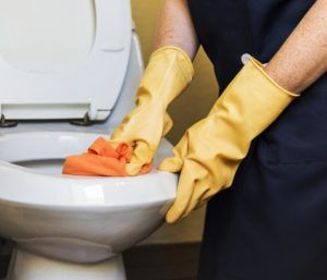 How to Clean TOTO Toilets