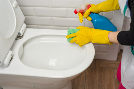 How to Clean TOTO Toilets - Toilet cleaning products